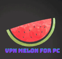 VPN Melon for PC