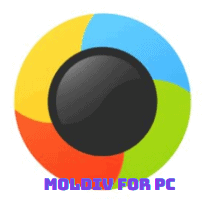 MOLDIV For PC
